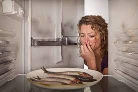 Уход за холодильником, как устранить запах в холодильнике быстро